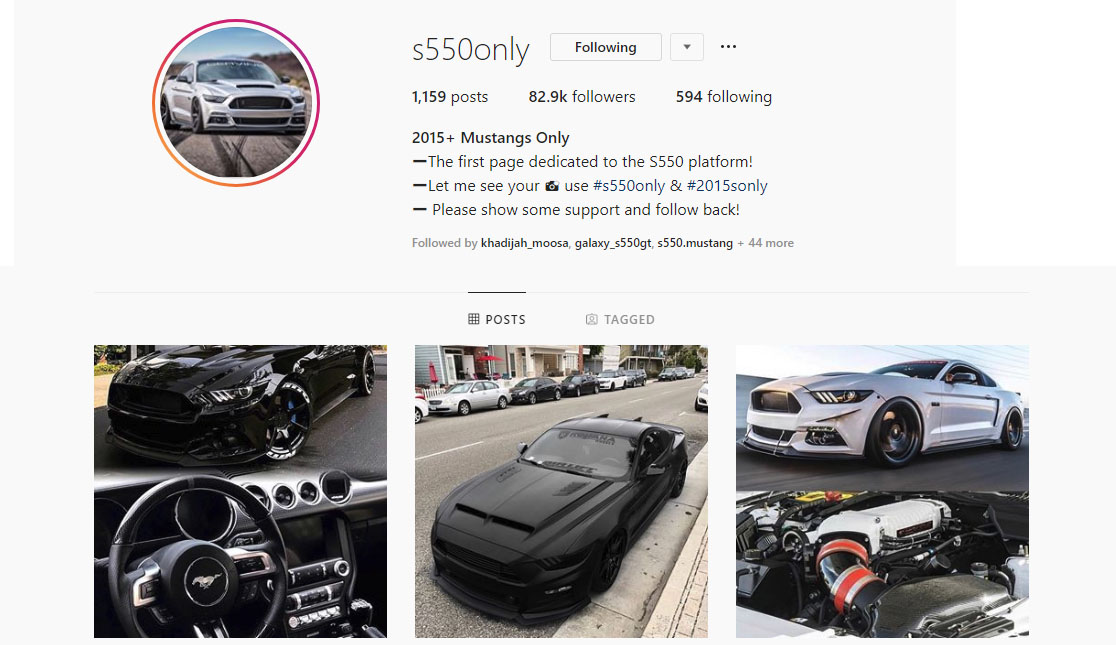 Top 7 Mustang Instagram Pages To Follow Today - Top 7 Mustang Instagram Pages To Follow Today