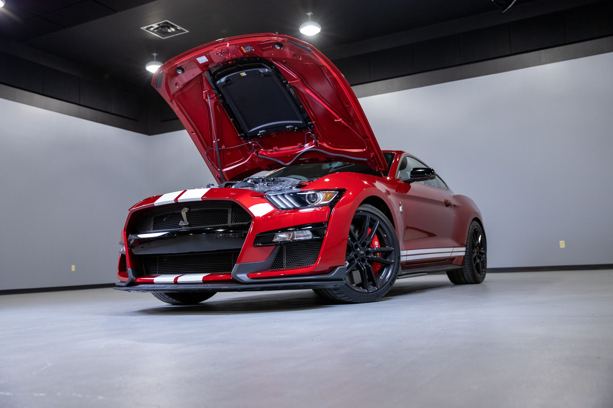 Everything You Need To Know About The 2020 Mustang GT500 - Everything You Need To Know About The 2020 Mustang GT500
