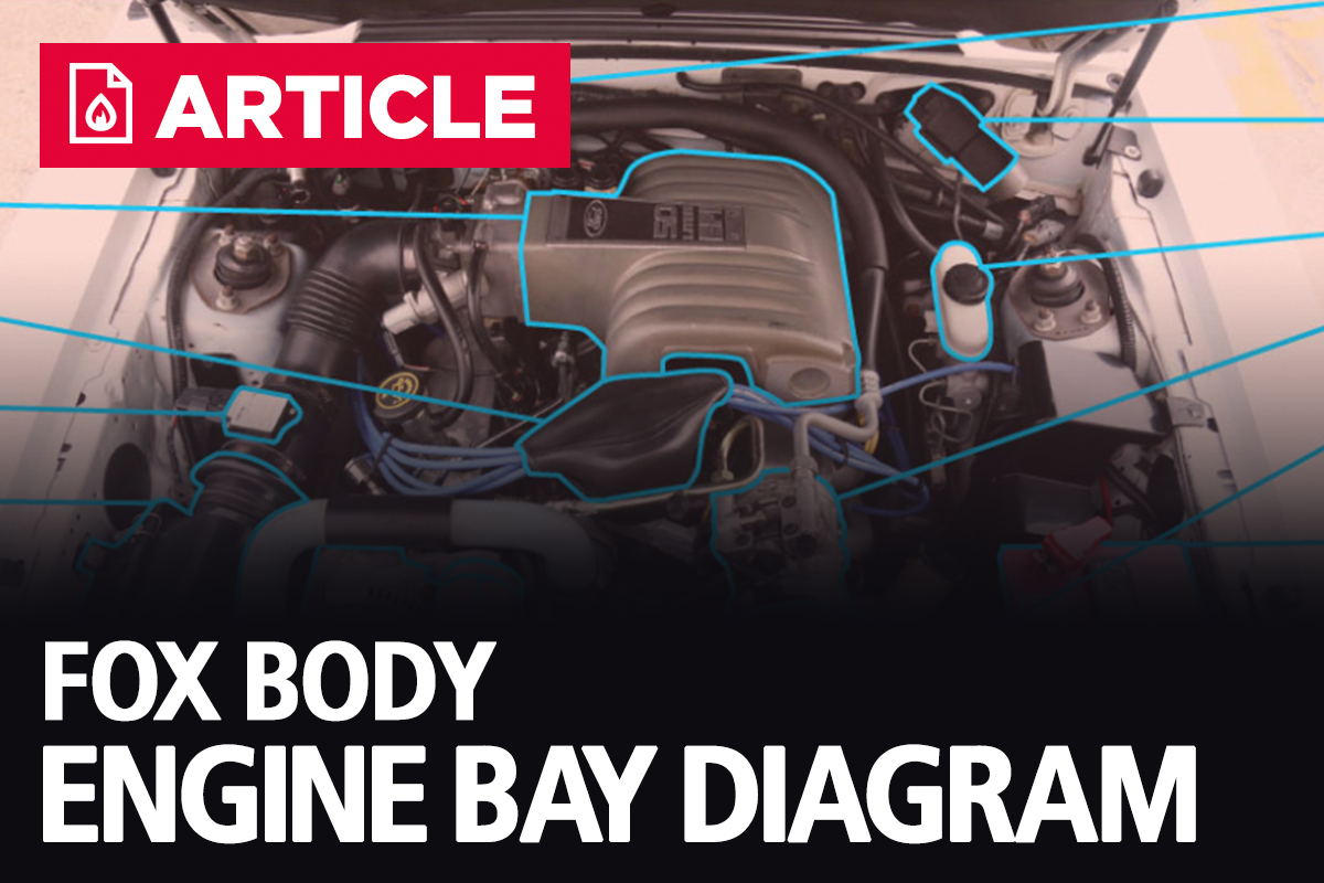 Fox Body Engine Bay Diagram 1986 1993 1990 Ford Mustang
