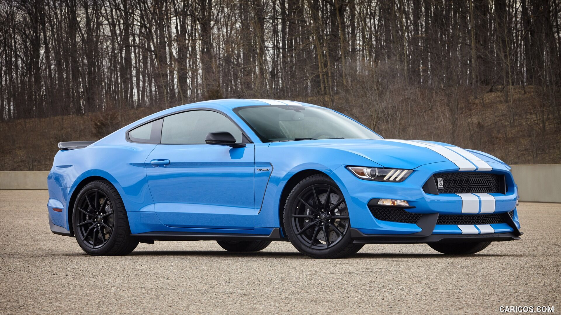 What Is The Grabber Blue Mustang? - What Is The Grabber Blue Mustang?